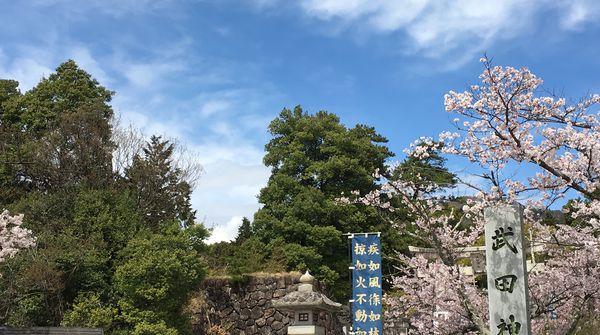 始まりはやはり武田神社