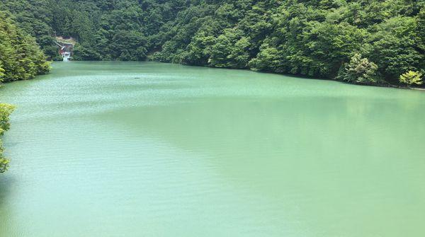 『自然豊かな雨畑の地』