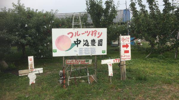 9種類のフルーツ狩りができる農園