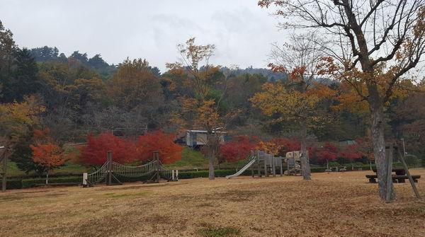 眺めの良い芝生広場☆
