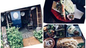 モダンな雰囲気と珍しい山菜が魅力です!