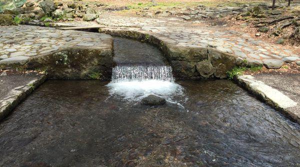 近隣の見どころ 三分一湧水