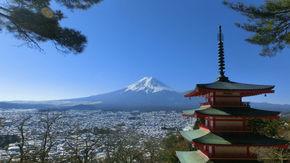 富士、松、五重塔、春には桜も一望。これぞ日本を象徴する景色!