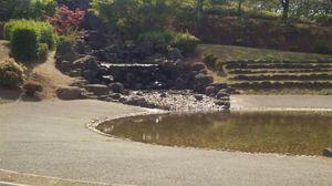 水遊びなら親水広場