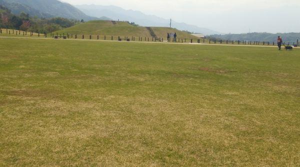 とっても広い芝生広場