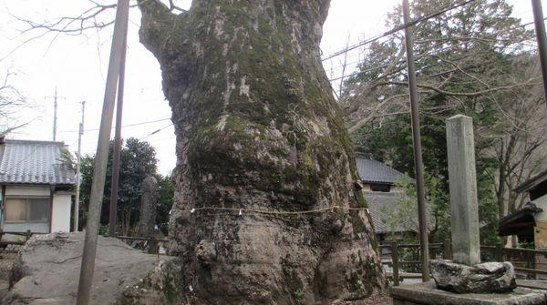 根古屋神社